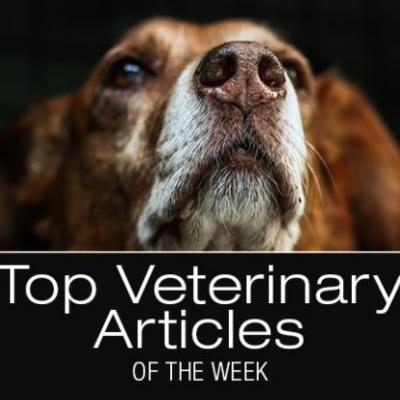 Top Veterinary Articles of the Week: Baclofen Intoxication, Vaccine Types and Advancements, and more