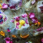 How to Make Edible Flower Ice Cubes