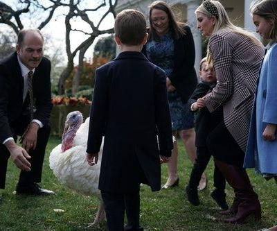 These Photos Of Ivanka Trump At The 2018 Turkey Pardon Are Just So Normal