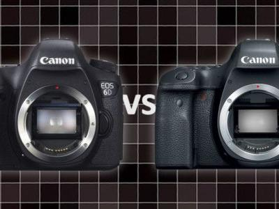 Canon 6D vs 6D Mark II: A Real-Life Noise Comparison