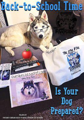 Preparing Your Dog for Back-to-School Time!