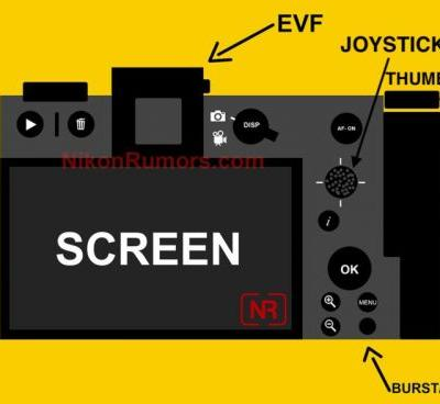 The Rear Layout of Nikon's Full Frame Mirrorless Camera