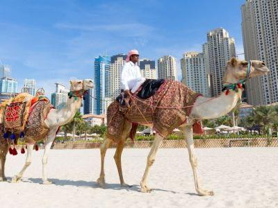 15 extraordinary things to do in the United Arab Emirates