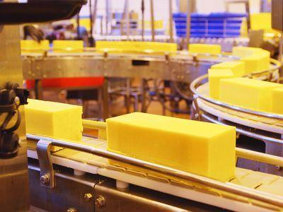 Watch: Making a Cheddar Cheese With a 100-Year-Old Recipe