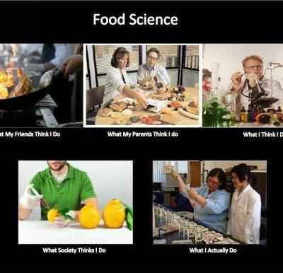 No, I'm not a chef or nutritionist: Food Science in the eyes of a Non-Food Scientist
