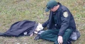 Officer Wouldn't Leave This Injured Dog's Side Until Help Arrived