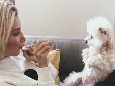 Ashley Tisdale Is 'Broken' After the Death of Her Beloved Dog Maui: 'I Can't Stop Crying'