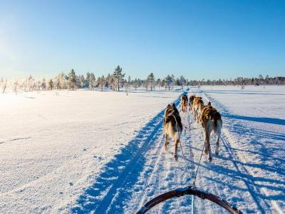 Lands of snow and ice: 10 icy escapes