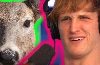 Logan Paul Ignites Instant Outrage After Announcing Go Gay
