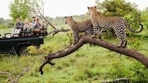 Africa is keen to take its tourism beyond safaris