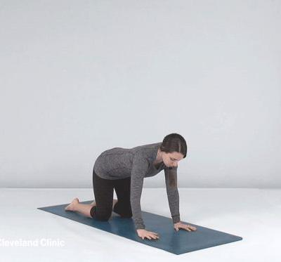 Yoga Poses That Can Strengthen Your Core Muscles