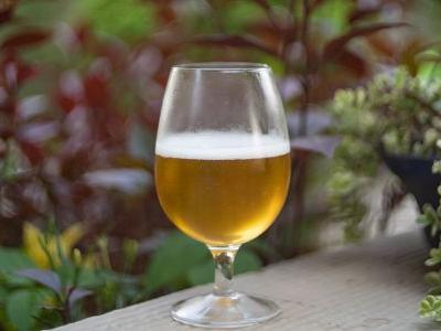 Breweries of All Sizes Can Embrace Sustainable Initiatives - Here's How