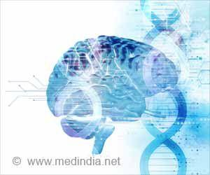 Scientists Decode Function of Gene Associated With Alzheimer's Disease