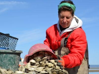 On East Coast Oyster Farms, 'Women Are Rising Up From The Bay In A Big Way'