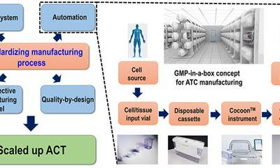 Scaling up the Manufacturing Process of Adoptive T Cell Immunotherapy