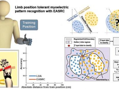 Limb Position Tolerant Pattern Recognition for Myoelectric Prosthesis Control with Adaptive Sparse Representations from Extreme Learning