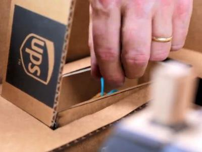 UPS Brings Their A-Game To Labo Accessories