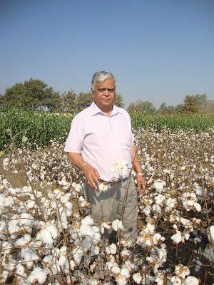 5 Questions with Dr. C.D. Mayee, the Farmer's Son Who Became India's Champion of Biotech