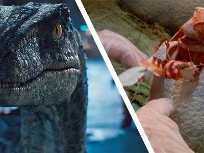 Cool Stuff: Bring Home Blue the Raptor or a Hatched Baby from 'Jurassic World' and 'Jurassic Park'