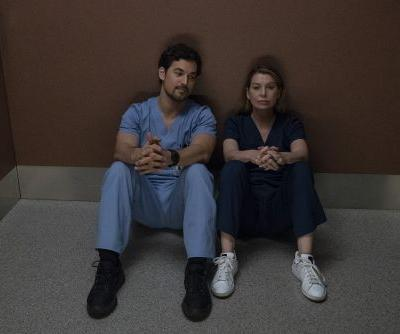What Did DeLuca Say In Italian? 'Grey's Anatomy' Revealed His Touching Backstory