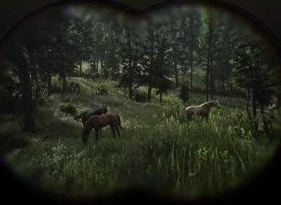 'Red Dead Redemption 2': How to find the best horses