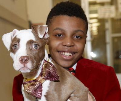 This kid makes shelter puppies look fabulous