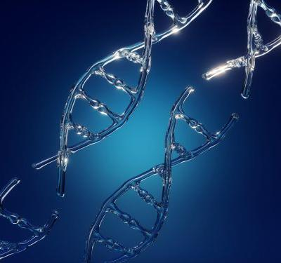 New Study Shows CRISPR Can Delete Big Chunks of DNA