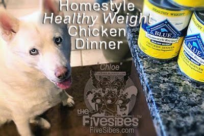 Blue Buffalo Homestyle Recipe Healthy Weight Chicken Dinner Review ChewyInfuencer