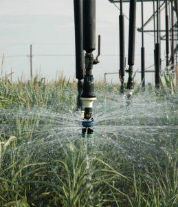 High Plains Irrigation Conference set Feb. 7 in Amarillo