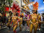 WHO urges carnival-bound tourists to get yellow fever shot