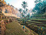 The world's 20 most lusted-after honeymoon destinations revealed - and it's Bali that's top