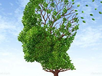 Alzheimer's disease and Dementia are two entirely different things