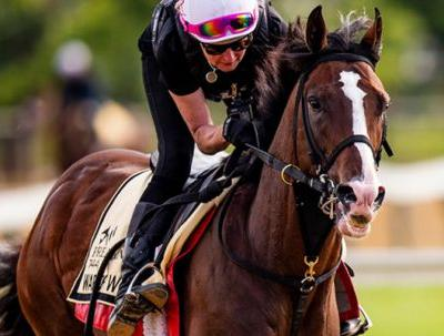 Watch Preakness Stakes Online Free NBC Sports Live Streaming: 2019 Horse Race, Start Time