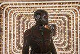 11 Ways Marvel Could Remedy That Insane Ant-Man Cliffhanger