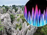Rock candy used to understand how stone forests were formed