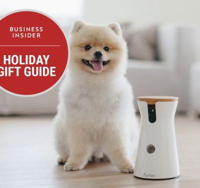 18 awesome and weird pet gifts to give and get this holiday season