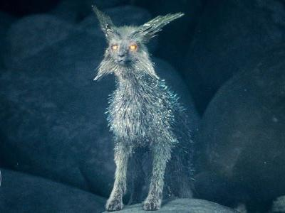 The Last Jedi's Crystal Foxes Will Help The Resistance