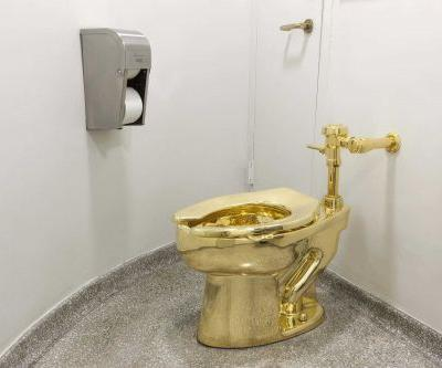 Solid gold toilet stolen from Blenheim Palace, birthplace of Winston Churchill