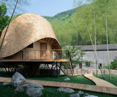 Treewow O - A Tree House of Curved Round Roof / MONOARCHI