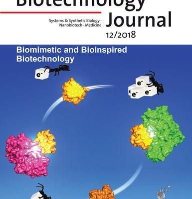 Inside Front Cover: Biotechnology Journal 12/2018