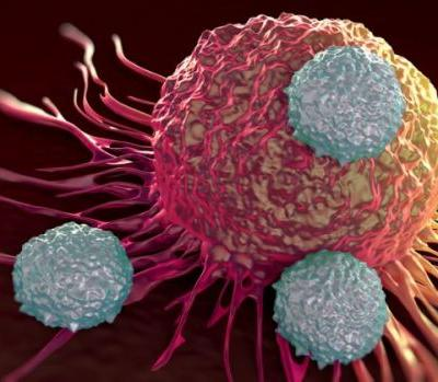 Subject CAR-Ts to price competition or randomized trials to ensure even coverage, expert says