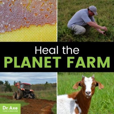 Heal the Planet Farm: A 7-Year Plan to Reshape the Food System