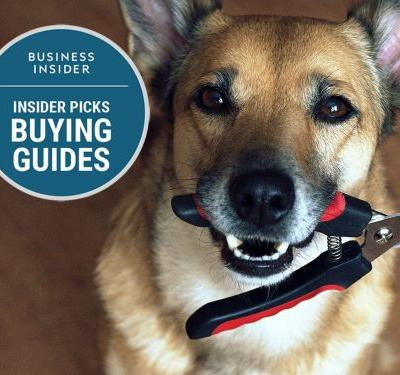 The best dog nail clippers you can buy