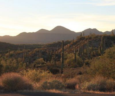 7 of the Best Things to Do in Scottsdale, Arizona