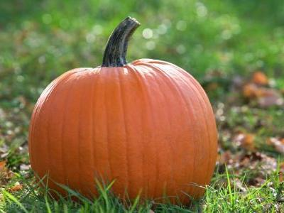 Pumpkins are a natural and delicious way to keep your heart strong if you're obese