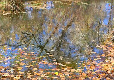 """Fall Landscape,Colorado Landscape, Water Reflections, Fine Art Photography,""""Fall Refections"""" by International Photographer Kit Hedman, Boarding House Studio Galleries, Denver"""