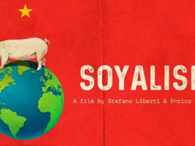 Soyalism. Survival kit for the modern world.