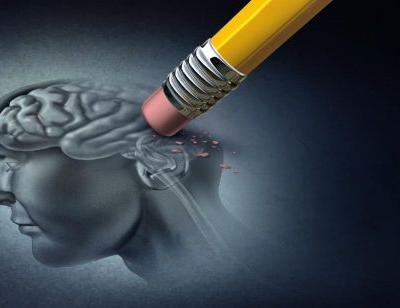 What Role Does Genetics Play in the Risk of Developing Alzheimer's Disease?