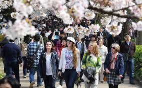 Japan experienced record high visitor number last year with low shopping spree
