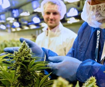 Tilray is soaring after announcing a deal with a unit of the Swiss drug giant Novartis to take its medical products global